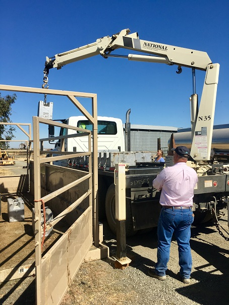 Portable Livestock Scale Tested With Our Vehicle-Mounted Crane