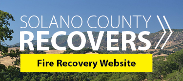Fire Recovery Website (Click Here)