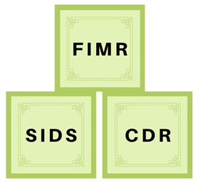 Three green blocks with text FIMR, SIDS, CDR (representing acronym of 3 existing fetal, infant, and child death review programs at Solano County MCAH Bureau