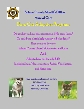 Click here to view the Animal Care Division Barn Cat Adoption Program Flyer